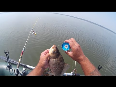 Рыбалка с лодки на кормушку и соску .