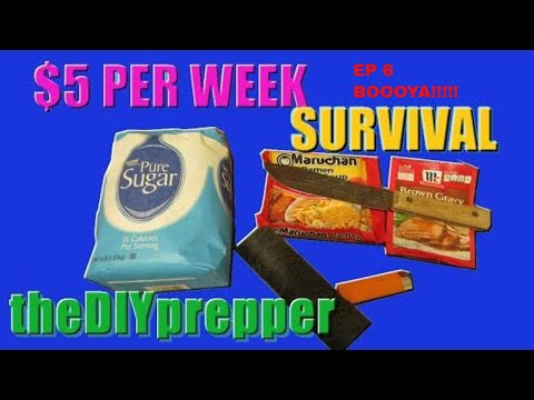 $5.00 Prepping for Survival ep4