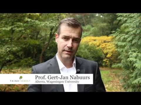 Professor Gert-Jan Nabuurs, coordinator of EFI's new From Science to Policy study, explains how forests and the forest sector have a significant role to play in ... Author : EuropeanForest