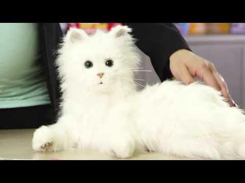 Fur Real Lulu My Cuddlin' Kitten | Toys R Us Canada