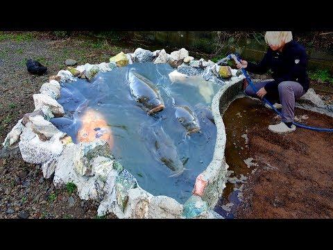 【池作り】手作りの池がついに完成!?池の水深は〇〇cmに。