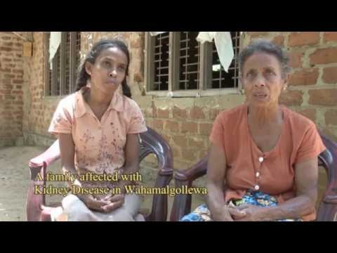 gender issues in sri lanka Colombo, sri lanka: international water management institute (iwmi)  gender- equality in statutory water law: the case of priority general authorizations in.