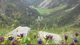 camping Van d'en Haut , Valais