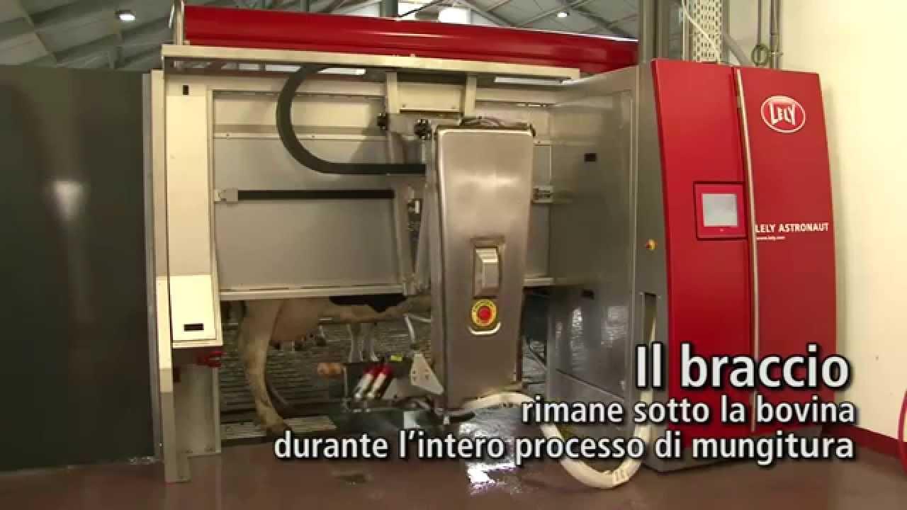Lely Astronaut A4 - Milking robot arm (Italian)