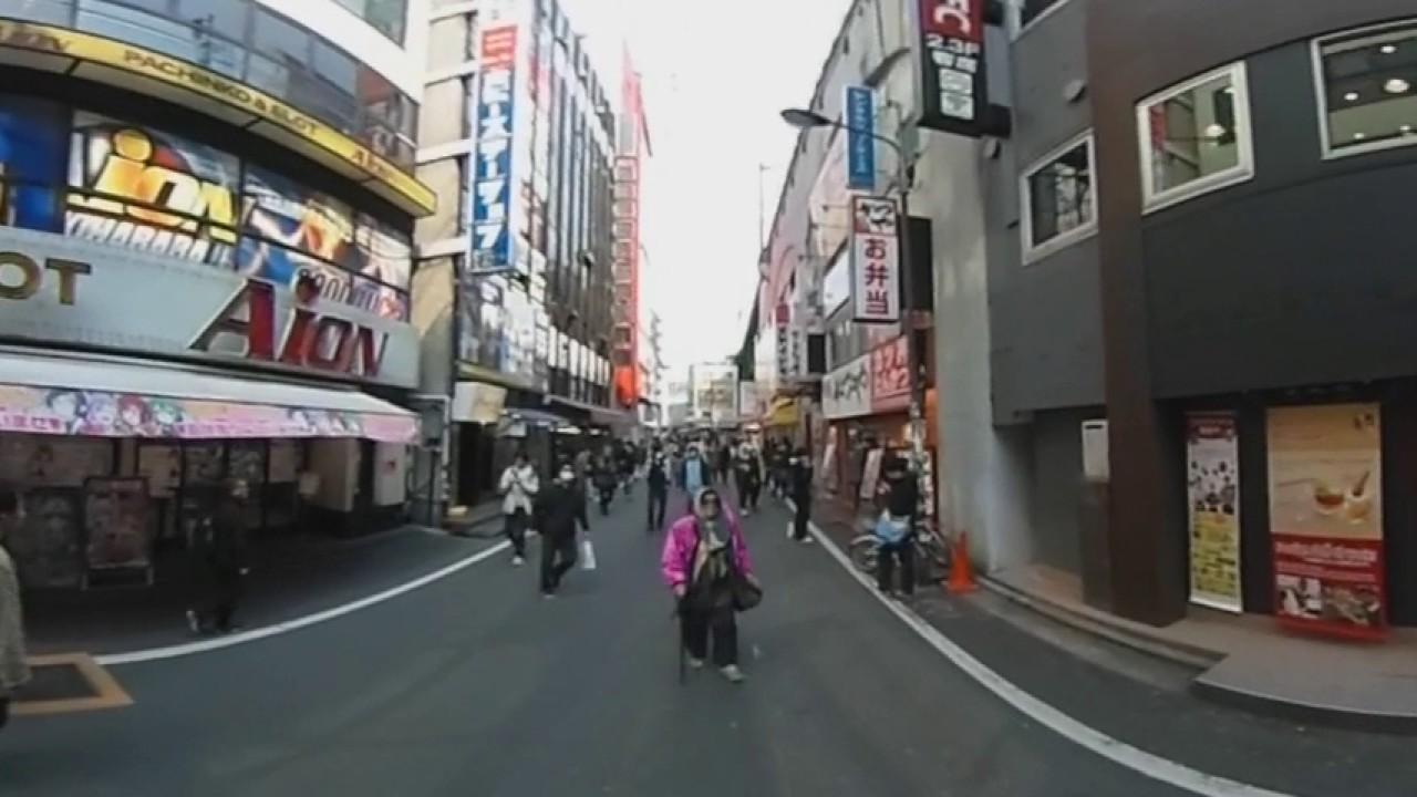 Akihabara Walking Tour