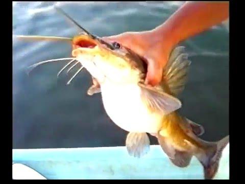 สารคดีส่องโลก ตกปลาน้ำโจน 03 ตอน การตกปลาหน้าดิน 1