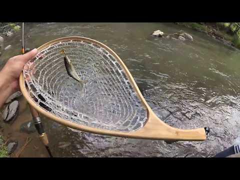 Ручьевая Форель на Спиннинг / Lure Fishing For Brook Trout