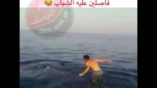 Video Walking on top of a Giant Blue Whale in Sea.. download MP3, 3GP, MP4, WEBM, AVI, FLV November 2017