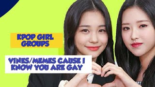 KPOP GIRL GROUPS VINES/MEMES CAUSE I KNOW YOU ARE GAY