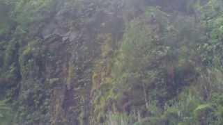Air Terjun Cibeureum, Cibodas 02122012130