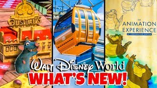 Top 10 New Attractions at Walt Disney World in 2019 Pt 2