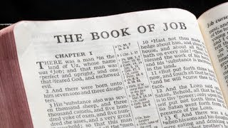 Job 38 Daily Bible Reading with Paul Nison
