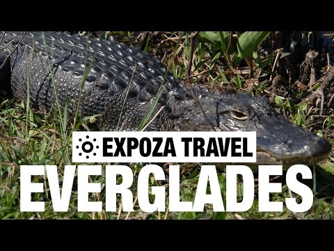 Everglades Vacation Travel Video Guide