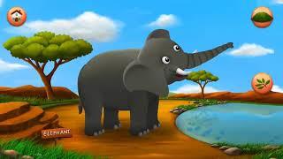 Дети учатся животных / кормить животных / Образовательные игры