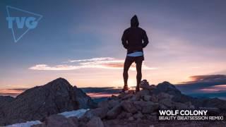 Wolf Colony - Beauty (Beatsession Remix)