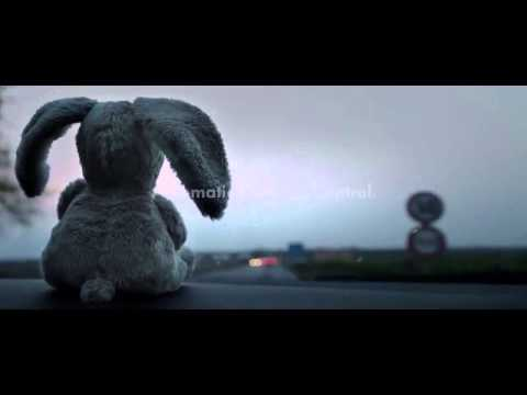 Volkswagen Golf Automatic Distance Control Teddy Tragedy