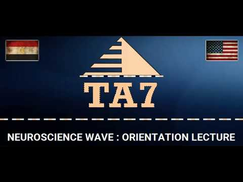TA7 USMLE STEP 1 ORIENTATION SESSION