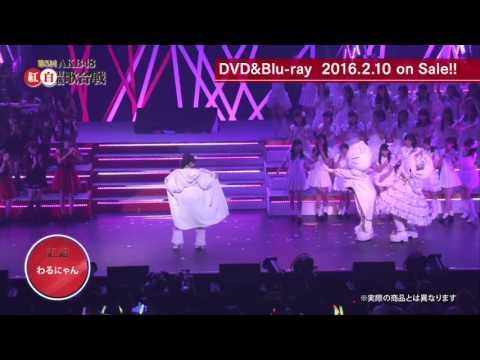 Warunyan - Trailer AKB48 Kohaku Taikou Uta Gassen 2015..
