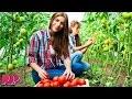 Are Lesbian Farmers Invading America? video