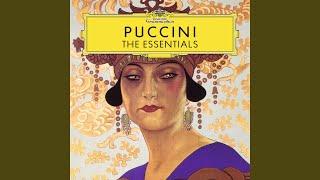 Puccini Gianni Schicchi O mio babbino caro