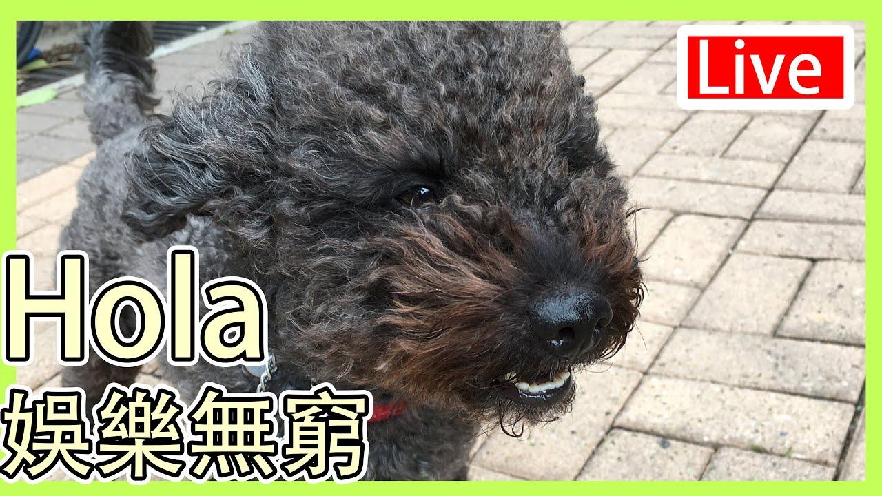 Hola娛樂無窮 (8月1日)