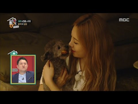 [Living together in empty room] 발칙한 동거 -Yura&puppy union is the love 20170526