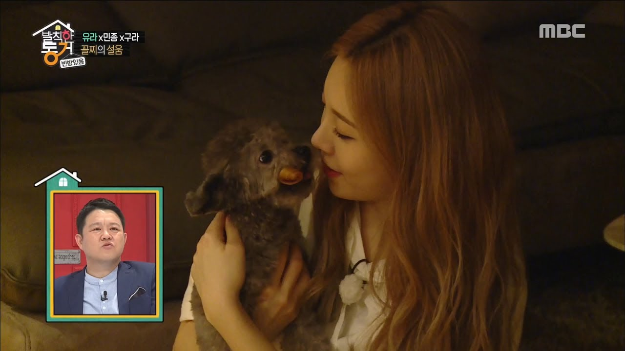Living Together In Empty Room Yura Puppy Union Is The Love 20170526 Youtube