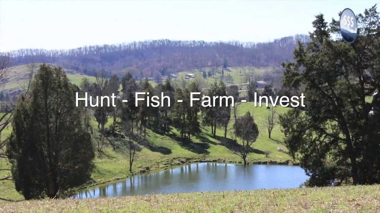 Farm For Sale Tennessee Absolute Auction Hawkins Co