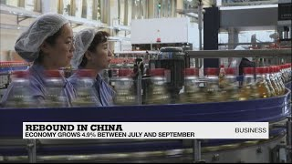 China's economy bounces back with 4.9% growth in Q3