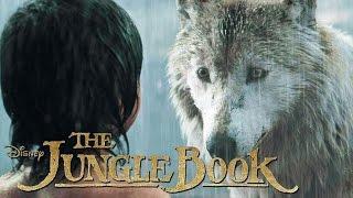 THE JUNGLE BOOK  Mogli verlässt das Rudel  Disney HD