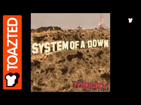 System Of A Down Daron interview with Malakian | 2002 | Toazted