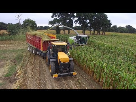 EDT Robillard I Fastrac 8330 I Ensilage De Maïs 2018