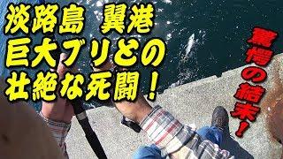 淡路島 翼港釣行記 2017年05月18日 巨大ブリとの壮絶な死闘!
