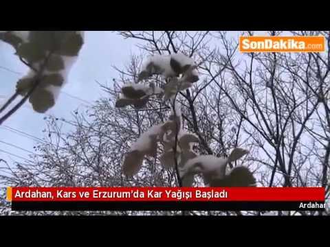 Ardahan, Kars ve Erzurum'da Kar Yağışı Başladı