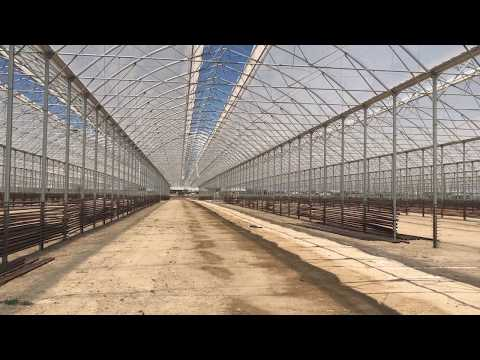 Grow: Azerbaijan, Baku, GrowGroup / Richel greenhouse under construction