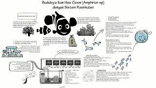 [PELUANG USAHA] Budidaya Clownfish dengan Sistem Resirkulasi