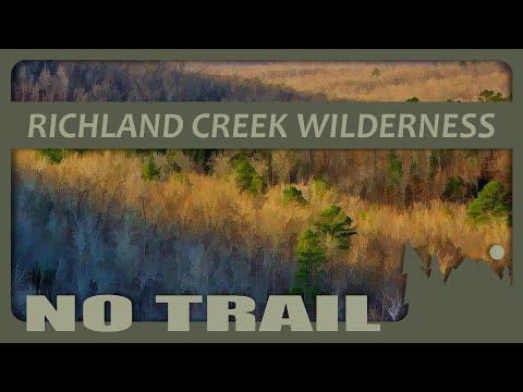 278 Richland Creek Wilderness Area Ridge Hike