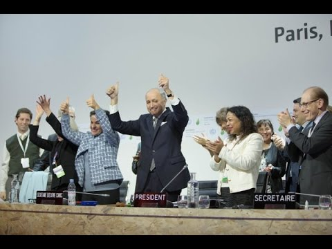 Two Weeks of COP 21 in 10 Minutes