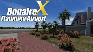Bonaire Flamingo Airport X – Official Video