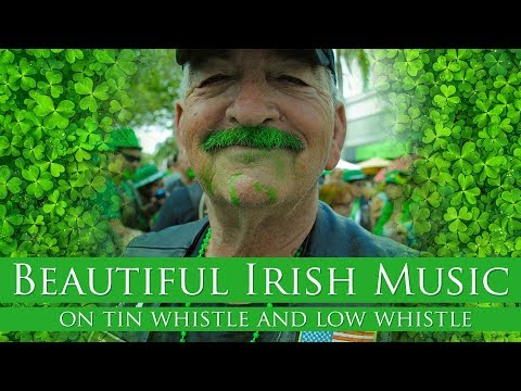 Beautiful Irish Music On Tin Whistle And Low Whistle | 10 Minutes Relax