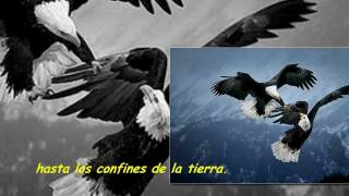Tina Turner & Sting - Silent Wings (Español)