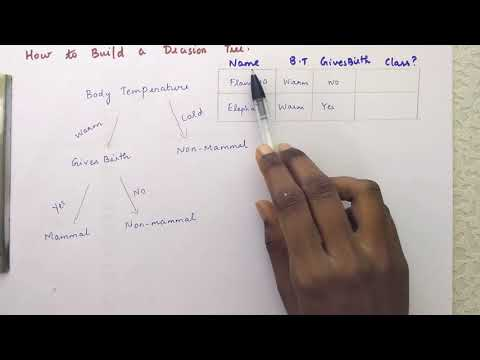 Decision Tree Induction In Data Mining || How To Build A Decision Tree With Real Time Example