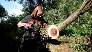 Gambar cover SteelWood на природе. Или что можно сделать с помощью ножа