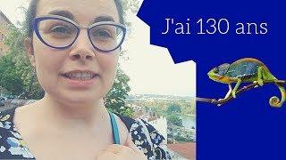 #26 Le caméléon zébré - 1001 vies en une