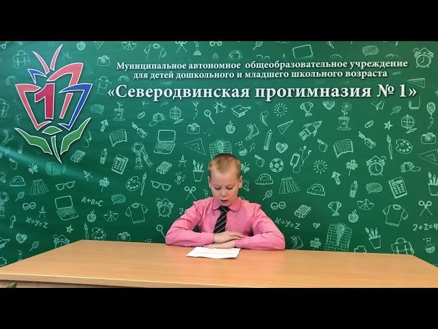 Изображение предпросмотра прочтения – АлексейПанов читает произведение «Бабка» В.А.Осеевой