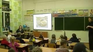 """""""Чудо-дерево"""". Интегрированный урок в 1 классе СОШ №1. 27.12.2016 г"""