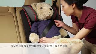 保时捷婴儿安全座椅G2+G3 - Porsche Baby Car Seat G2+G3 (Chinese Version)