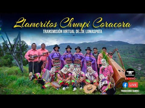LLAMERITOS / DVD