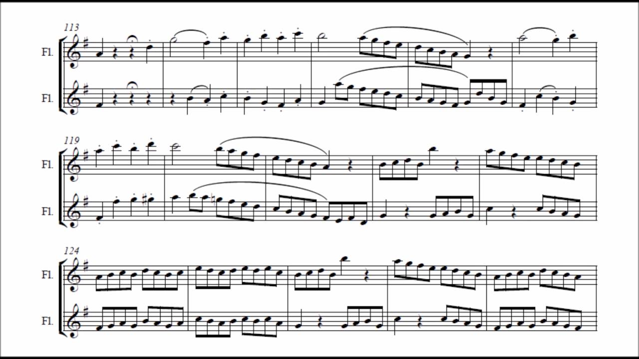 Ludwig van Beethoven - Duo for two flutes WoO 26 (VIDEO REQUEST)