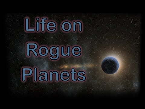 Habitable Planets 4: Life on Rogue Planets